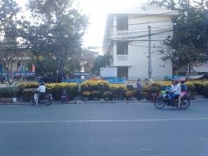 flower market nha trang