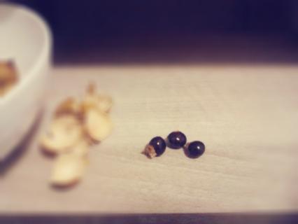 longan seeds